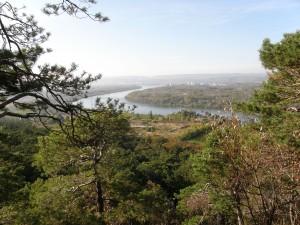 Ein Blick über die Donau